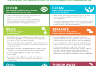 002 Fact Sheet Template Free Download Fearsome Ideas within Fact Sheet Template Microsoft Word