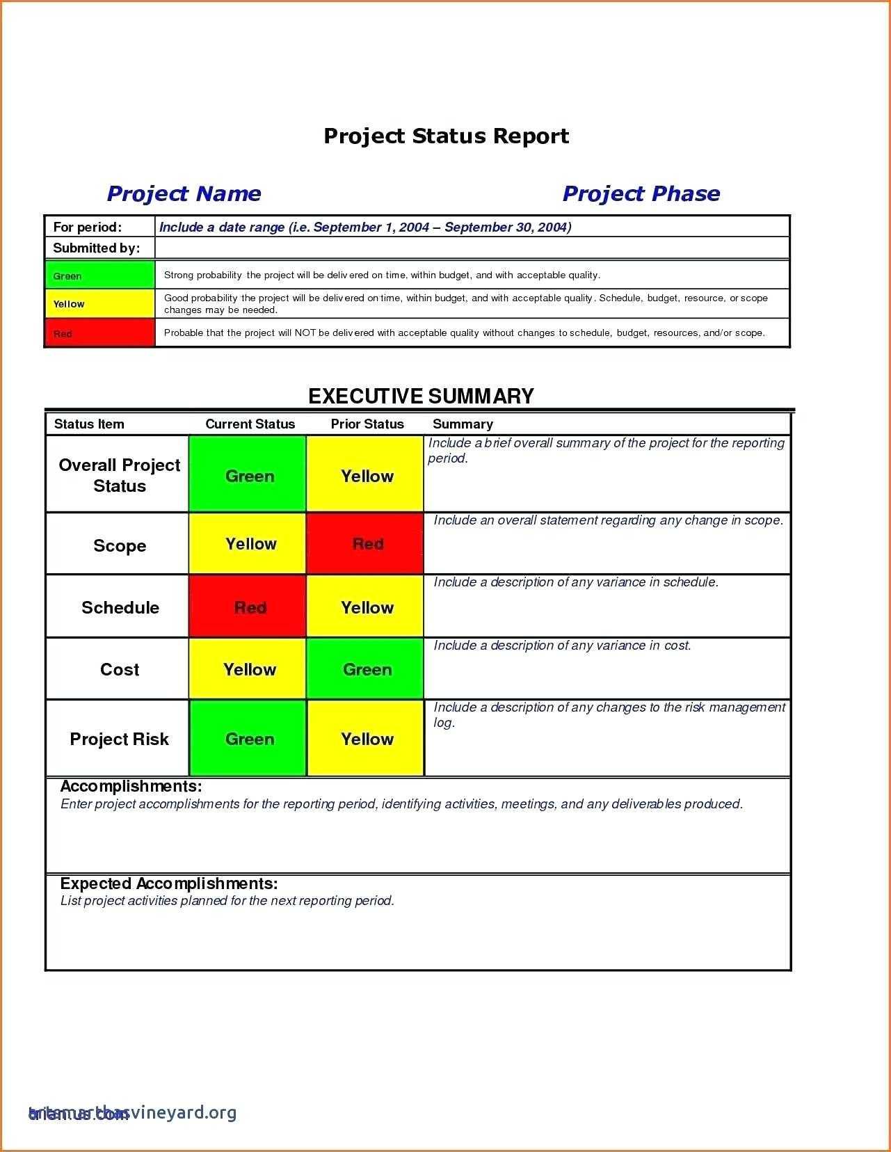 009 Project Executive Summary Template Ideas Management Throughout Executive Summary Project Status Report Template