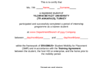 2020 Certificate Of Attendance – Fillable, Printable Pdf in Conference Certificate Of Attendance Template