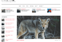 Best Aggregator Themes For WordPress – Wp Mayor intended for Drudge Report Template