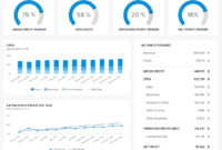 Financial Dashboards – See The Best Examples & Templates with regard to Financial Reporting Dashboard Template