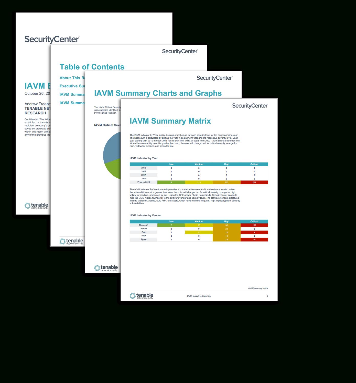 Iavm Executive Summary Report - Sc Report Template | Tenable® With Regard To Executive Summary Report Template